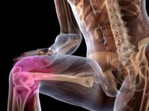 Патч к finereader 8. Как избавиться от боли в коленных.